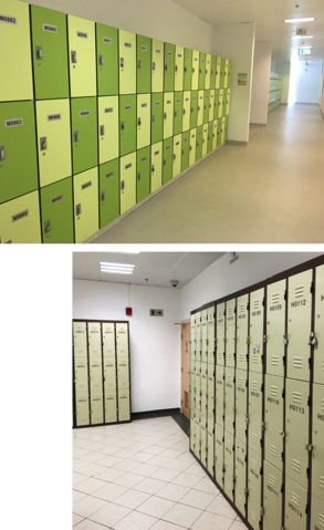 Two Types of Student Lockers - Wooden & Steel